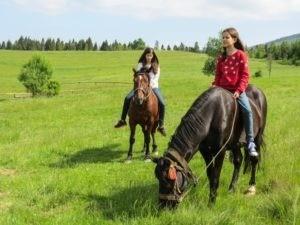 Фото девочек на лошадях